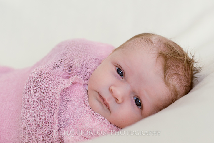 newborn portrait session heidi horton photography southland gore riversdale