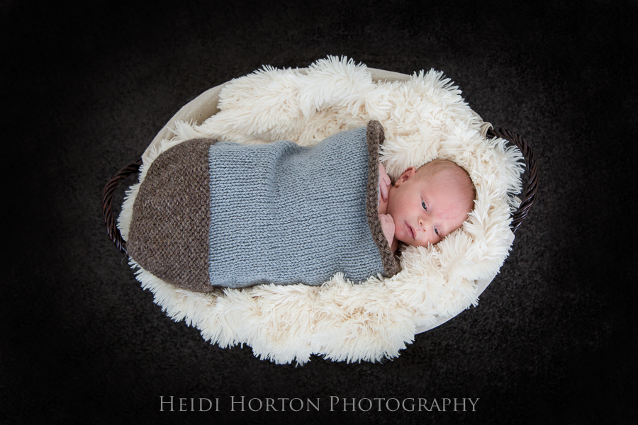 newborn photos in studio session southland Heidi Horton Photographer