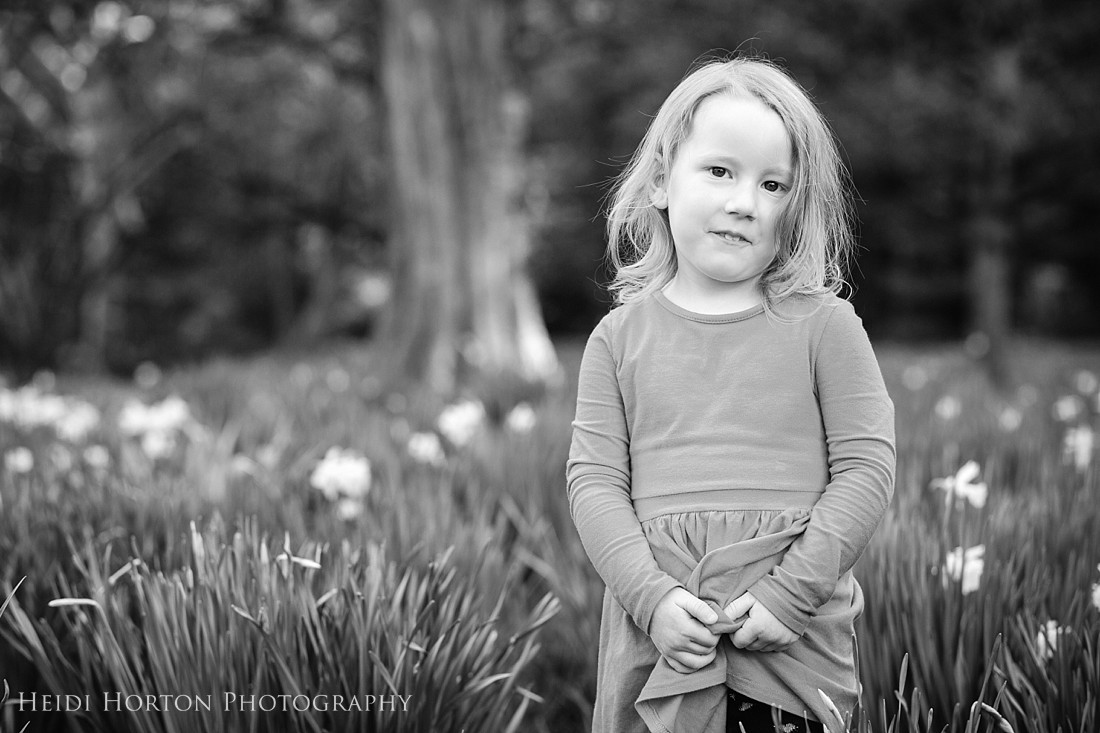 family portraits invercargill, Queens Park Invercargill, portraits in spring daffodils, photographer in Invercargill, Southland photographer, Heidi Horton Photography