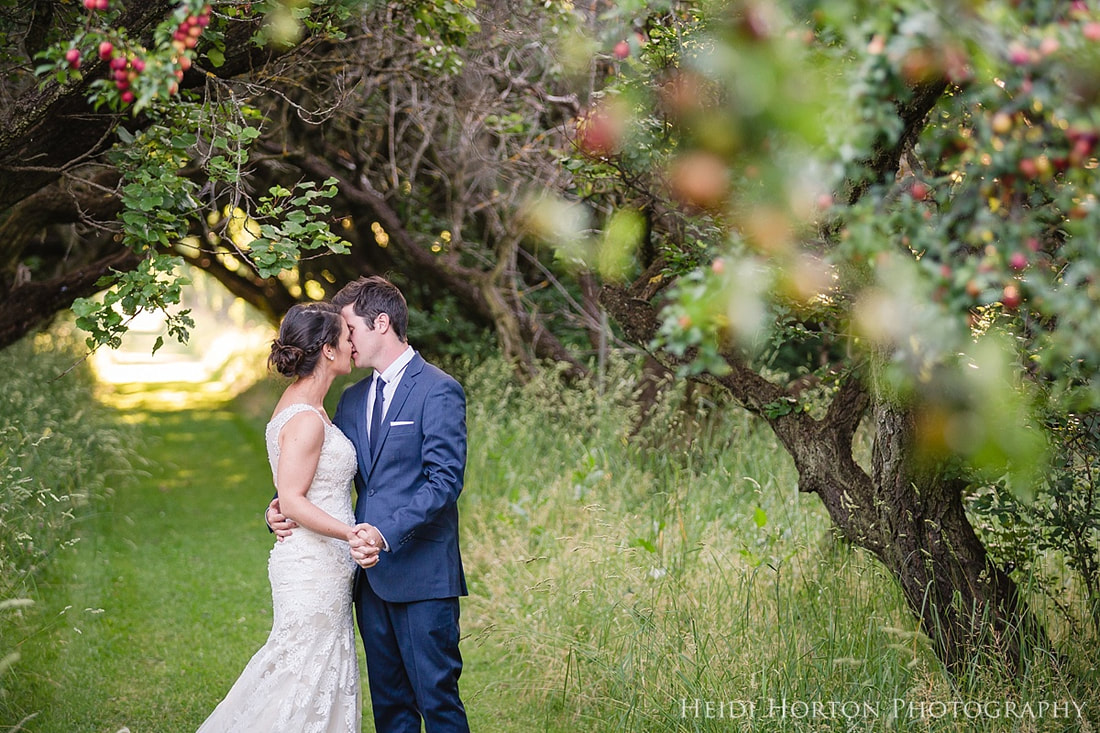 using foreground bokeh, creating depth using layering, Southland Photographer, Central Otago Photographer, Wedding photos, Heidi Horton Photography